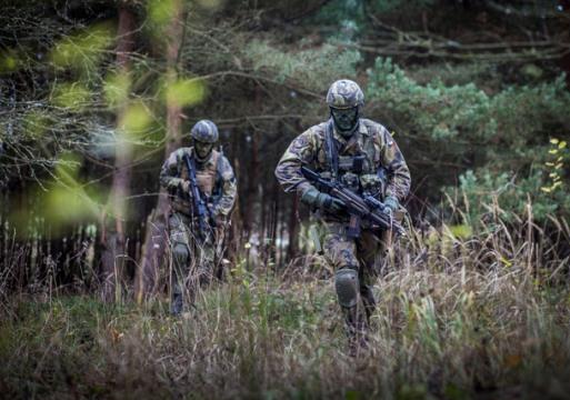 Вооруженные силы Чешской Республики