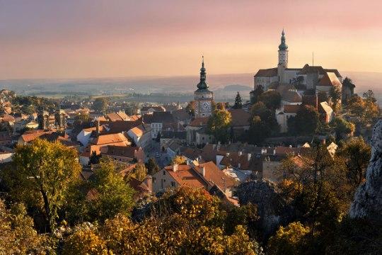 Виноделие в Моравии
