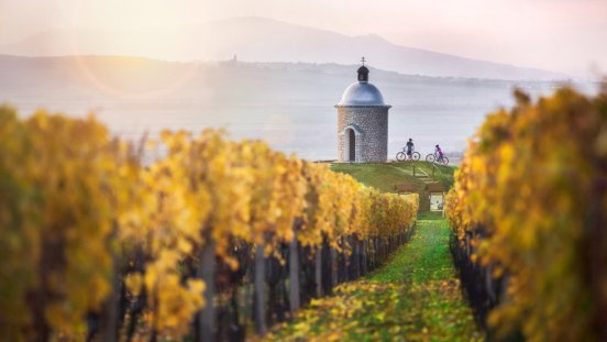 Зноймо – город виноделия