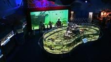 Морський світ в Празі