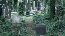Ольшанское кладбище – самое старое и красивое кладбище в Праге