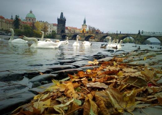 Осенняя Прага - megatour.cz