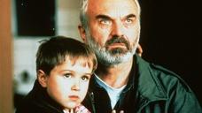Чешский фильм «Коля» – самый посещаемый фильм Чехии